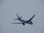 エアキヨさんが、成田国際空港で撮影したエジプト航空 777-36N/ERの航空フォト(写真)