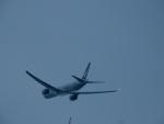 エアキヨさんが、成田国際空港で撮影したキャセイパシフィック航空 777-367/ERの航空フォト(写真)