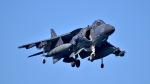ららぞうさんが、岩国空港で撮影したアメリカ海兵隊 AV-8B Harrier II+の航空フォト(写真)