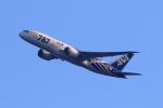 Fatman125さんが、伊丹空港で撮影した全日空 787-8 Dreamlinerの航空フォト(飛行機 写真・画像)