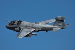 AREA884さんが、厚木飛行場で撮影したアメリカ海兵隊 EA-6B Prowler (G-128)の航空フォト(飛行機 写真・画像)