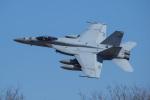 ほーねっともきさんが、厚木飛行場で撮影したアメリカ海軍 F/A-18E Super Hornetの航空フォト(写真)