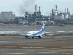 ピーノックさんが、新潟空港で撮影したANAウイングス 737-54Kの航空フォト(写真)