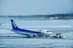 パンダさんが、新千歳空港で撮影したANAウイングス 737-54Kの航空フォト(飛行機 写真・画像)