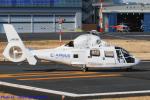 Chofu Spotter Ariaさんが、東京ヘリポートで撮影したエアバス・ヘリコプターズ・ジャパン AS365N2 Dauphin 2の航空フォト(飛行機 写真・画像)