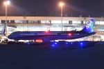 Gouei Changeさんが、新千歳空港で撮影した全日空 A321-211の航空フォト(写真)