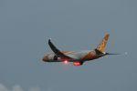 ぷぅぷぅまるさんが、関西国際空港で撮影したスクート 787-8 Dreamlinerの航空フォト(写真)