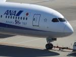 kayさんが、羽田空港で撮影した全日空 787-9の航空フォト(写真)