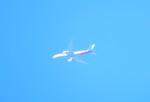 エアキヨさんが、成田国際空港で撮影したアシアナ航空 777-2B5/ERの航空フォト(写真)