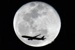 自宅で撮影された日本航空 - Japan Airlines [JL/JAL]の航空機写真