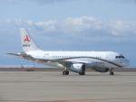 White Pelicanさんが、中部国際空港で撮影したサニー・グループ A319-115CJの航空フォト(写真)