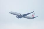 485k60さんが、山口宇部空港で撮影した日本航空 737-846の航空フォト(写真)
