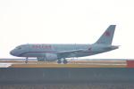 485k60さんが、山口宇部空港で撮影したロシア航空 A319-115の航空フォト(写真)