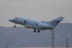 yabyanさんが、名古屋飛行場で撮影した航空自衛隊 U-125A(Hawker 800)の航空フォト(飛行機 写真・画像)
