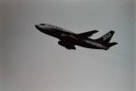 うすさんが、伊丹空港で撮影した全日空 737-281/Advの航空フォト(写真)