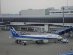 きったんさんが、中部国際空港で撮影した全日空 A320-211の航空フォト(写真)