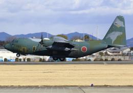 RA-86141さんが、名古屋飛行場で撮影した航空自衛隊 C-130H Herculesの航空フォト(飛行機 写真・画像)