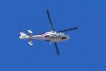 パンダさんが、成田国際空港で撮影した東邦航空 AS365N2 Dauphin 2の航空フォト(写真)