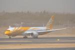 LEGACY-747さんが、成田国際空港で撮影したスクート (〜2017) 787-8 Dreamlinerの航空フォト(飛行機 写真・画像)