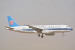 LEGACY-747さんが、成田国際空港で撮影した中国南方航空 A320-232の航空フォト(写真)