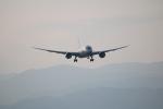 和尚さんが、高知空港で撮影した全日空 787-8 Dreamlinerの航空フォト(写真)