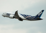 しばたろうさんが、伊丹空港で撮影した全日空 787-8 Dreamlinerの航空フォト(写真)