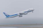 AREA884さんが、羽田空港で撮影した全日空 777-281の航空フォト(写真)