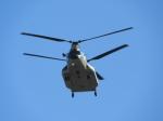 おっつんさんが、入間飛行場で撮影した航空自衛隊 CH-47J/LRの航空フォト(写真)