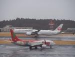 空港快速さんが、成田国際空港で撮影したティーウェイ航空 737-8HXの航空フォト(写真)