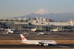 buntaroさんが、羽田空港で撮影した日本航空 787-8 Dreamlinerの航空フォト(写真)