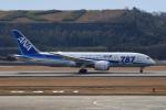 tsubasa0624さんが、長崎空港で撮影した全日空 787-8 Dreamlinerの航空フォト(飛行機 写真・画像)
