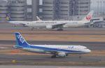 空港快速さんが、羽田空港で撮影した全日空 A320-211の航空フォト(写真)