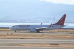職業旅人さんが、関西国際空港で撮影したイースター航空 737-86Jの航空フォト(写真)