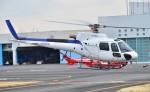 Soraya_Projectさんが、東京ヘリポートで撮影したディーエイチシー AS350B3 Ecureuilの航空フォト(写真)