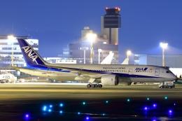 リクパパさんが、伊丹空港で撮影した全日空 787-8 Dreamlinerの航空フォト(飛行機 写真・画像)