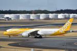 パンダさんが、成田国際空港で撮影したスクート (〜2017) 787-9の航空フォト(飛行機 写真・画像)