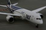 sarangさんが、羽田空港で撮影した全日空 787-8 Dreamlinerの航空フォト(写真)