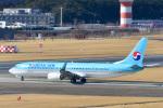 パンダさんが、成田国際空港で撮影した大韓航空 737-9B5/ER の航空フォト(写真)
