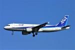 にしやんさんが、羽田空港で撮影した全日空 A320-211の航空フォト(写真)