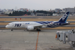 uhfxさんが、伊丹空港で撮影した全日空 787-8 Dreamlinerの航空フォト(飛行機 写真・画像)