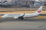 uhfxさんが、伊丹空港で撮影した日本航空 737-846の航空フォト(写真)