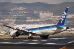 tyusonさんが、伊丹空港で撮影した全日空 787-8 Dreamlinerの航空フォト(飛行機 写真・画像)