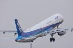 サボリーマンさんが、松山空港で撮影した全日空 A321-211の航空フォト(写真)