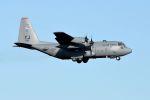 うめやしきさんが、厚木飛行場で撮影したアメリカ空軍 C-130H Herculesの航空フォト(写真)