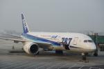 JA8037さんが、北京首都国際空港で撮影した全日空 787-8 Dreamlinerの航空フォト(写真)