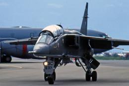 Echo-Kiloさんが、タンペレ・ピルカッラ空港で撮影したフランス空軍 Jaguar Eの航空フォト(飛行機 写真・画像)