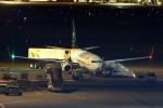りんたろうさんが、羽田空港で撮影したサウジアラビア財務省 737-9FG/ER BBJ3の航空フォト(写真)