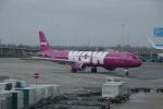 yabyanさんが、アムステルダム・スキポール国際空港で撮影したWOWエア A321-211の航空フォト(飛行機 写真・画像)