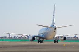 tasho0525さんが、羽田空港で撮影したジェット・コネクションズ 737-2V6/Advの航空フォト(飛行機 写真・画像)