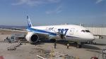 AE31Xさんが、ノーマン・Y・ミネタ・サンノゼ国際空港で撮影した全日空 787-8 Dreamlinerの航空フォト(写真)